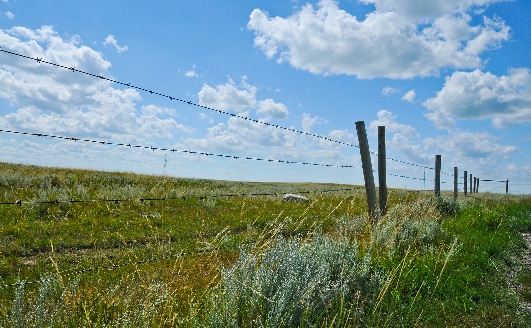 Estimated Costs for Livestock Fencing | Estimated Cost Fencing ...